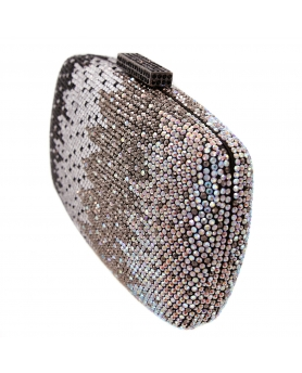 Crystal-Embellished Evening Clutch